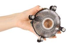 Kallare processor i hand royaltyfri bild