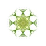 Kalligrafi för vektortappningprydnad Arkivbild