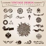 Kalligrafische elementen uitstekende Vectorsymbolen Stock Afbeeldingen
