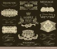 Kalligrafische ontwerpelementen Stock Fotografie