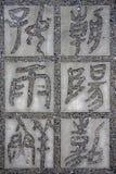 Kalligraphie des chinesischen Schriftzeichens Lizenzfreies Stockbild