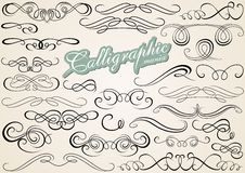 Kalligraphische Auslegungelemente Stockbilder
