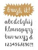 Kalligraphische Bürste Pen Font Hand Drawn Vector Stockbilder