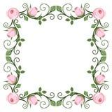 Kalligraphischer Rahmen der Weinlese mit rosa Rosen Vektor Stockfoto