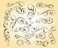 Kalligraphisches elegantes Elementdesign Auch im corel abgehobenen Betrag vektor abbildung