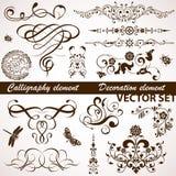 Kalligraphisches und Blumenelement Stockfotos