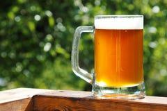 Kallt öl rånar i solig sommardag royaltyfri bild