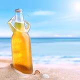 Kallt öl som tycker om en sol Royaltyfri Foto