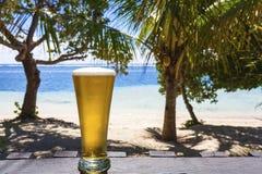 Kallt öl vid stranden arkivfoton