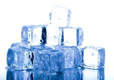kallt Royaltyfria Foton