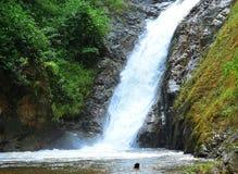 Kallt avslappnande vatten för naturlig vattenfall royaltyfri fotografi