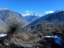 Kallt berg i uttranachal-3 arkivfoton