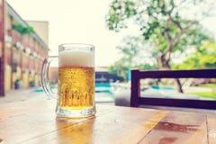 kallt exponeringsglas för öl fotografering för bildbyråer