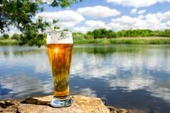 kallt exponeringsglas för öl royaltyfria bilder