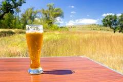 kallt exponeringsglas för öl arkivbilder