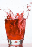 kallt exponeringsglas isolerade martini för coctail Arkivbild
