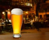kallt exponeringsglas med öl fotografering för bildbyråer