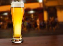 kallt exponeringsglas med öl royaltyfri fotografi