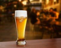 kallt exponeringsglas med öl arkivbild