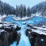 Kallt landskap på Sunwapta Falls i de kanadensiska steniga bergen med snö- och granträd i underbart landskap och is och blåa flod arkivfoton