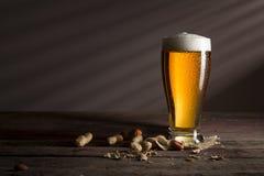 Kallt ljust öl och jordnötter arkivfoto