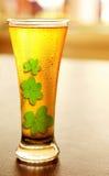 kallt lyckligt för öl Arkivbild