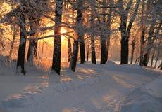 Kallt och varmt landskap arkivbild