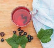 Kallt te från bär av den svarta vinbäret Royaltyfria Foton