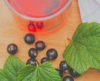 Kallt te som göras från den svarta vinbäret Royaltyfri Fotografi