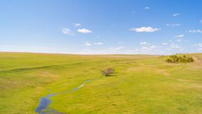 Kalm landschap met groen gras Stock Fotografie