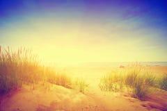 Kalm oceaan en zonnig strand met duinen en groen gras wijnoogst Stock Foto