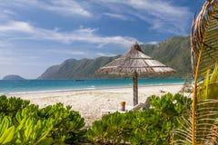 Kalm tropisch strand stock afbeelding