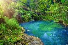 Kalm water in groen bos royalty-vrije stock afbeeldingen