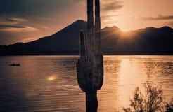 Kalm water - Roosevelt Lake, Arizona, de V.S. stock afbeeldingen