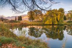 Kalm water van tuinvijver bij zonsondergang die op omringende bomen, grassen, en bergen wijzen royalty-vrije stock fotografie