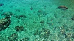 Kalm zeewater dichtbij stenen Vreedzaam blauw zeewater en grijze keien in perfecte plaats voor het snorkelen op Koh Tao Island stock video