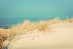 Kalm zonnig strand met duinen en gras somethere dichtbij Tallinn, Estland Royalty-vrije Stock Afbeeldingen
