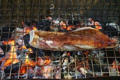 Kalmar gegrillt auf dem Grill Stockfoto