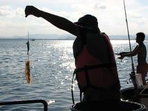 Kalmarfischen im Golf von Thailand lizenzfreie stockbilder