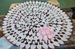 Kalmartrockner unter Sonnenlicht Stockbilder