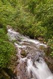 Kalmbachkreek, een schatplichtige van Passer rivier Royalty-vrije Stock Afbeelding