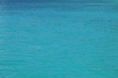 Kalme blauwe/turkooise waterspiegel voor achtergrond - oceaan Stock Foto