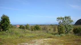 Kalme de zomerwind in kleine bomen en over weiland met blauwe zonnige hemel, blauwe overzees en een plattelandshuisje op de achte stock videobeelden