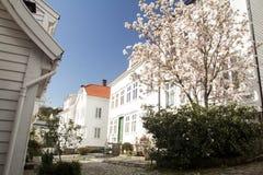 Kalme Noorse straat royalty-vrije stock fotografie
