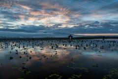 Kalme ochtend bij Inle-Meer, Myanmar Royalty-vrije Stock Foto