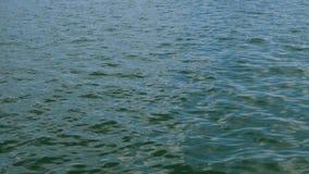 Kalme overzeese golf met rimpelingen die in de Zwarte Zee lopen Zonbezinning Natuurlijke mariene achtergrond stock footage