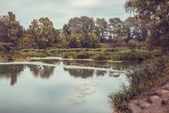 Kalme rivier in de de zomerochtend met groene bomen op achtergrond stock afbeeldingen