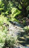 Kalme rivier in het midden van de stad royalty-vrije stock afbeeldingen