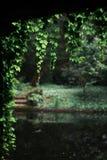 Kalme tuin op de achtergrond Stock Afbeelding