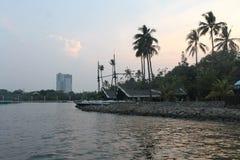 Kalme van de overzeese natuurlijke van de de kustavond schoonheidskokospalm de zonsondergangtijd Stock Foto's
